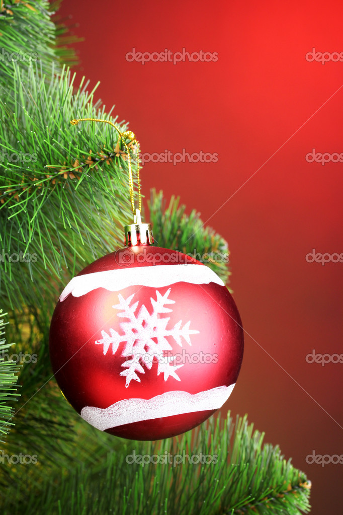 Beautiful Christmas red ball on fir tree  Stock Photo #6794300