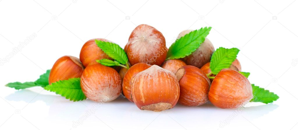 Hazelnuts isolated on white — Stock Photo #6796885
