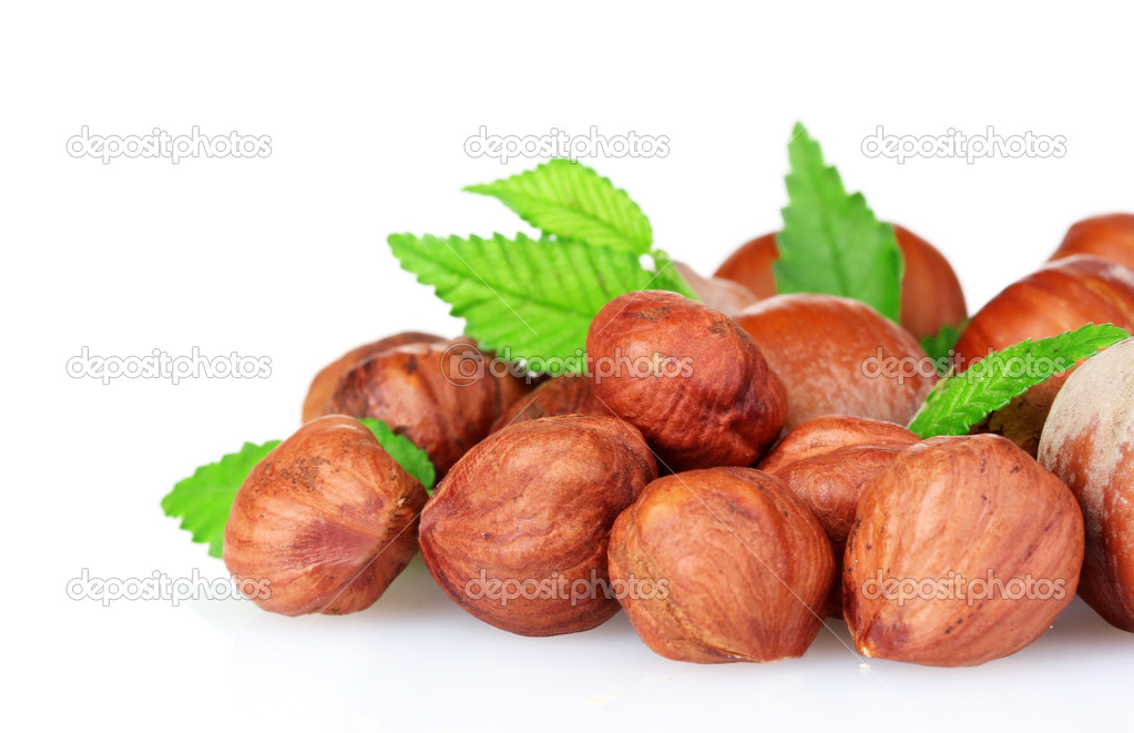 Hazelnuts isolated on white — Stock Photo #6796895
