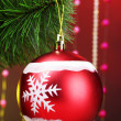 Beautiful Christmas red ball on fir tree — Stock Photo
