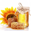 Beautiful combs, honey and sunflower  — Foto de Stock   #6801277