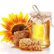 Beautiful combs, honey and sunflower - Stock Photo