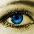 Blue woman eye closeup — Stock Photo