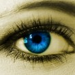 Royalty-Free Stock Photo: Blue woman eye closeup