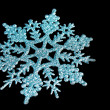 Blue shiny snowflake isolated on black — Stock fotografie