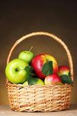 Korg med ekologiska äpplen — Stockfoto