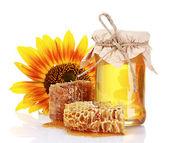 Beautiful combs, honey and sunflower — Stock Photo
