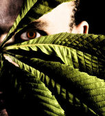 Man hiding with leaves. Jungle man — Stock Photo