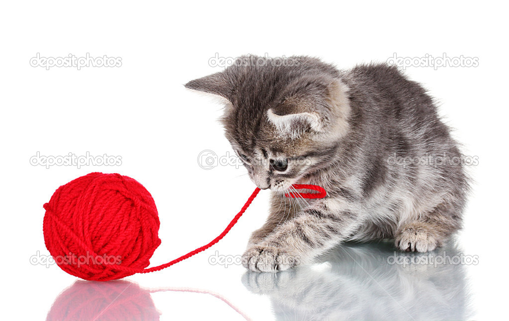 Funny gray kitten and ball of thread isolated on white — Stock Photo #6800910