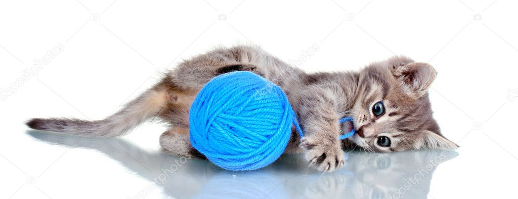 Funny gray kitten and ball of thread isolated on white — Stock Photo #6800965