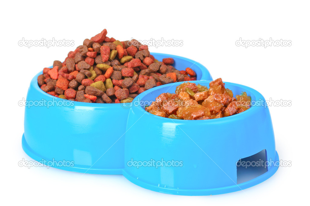 Dry cat food in bowls isolated on white — Stock Photo #6801223