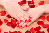 Beautiful red manicure and flower — Stock Photo
