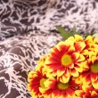 Stock Photo: Bunch of flowers on textile