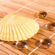Shell and gems on bamboo straws background - Stock Photo