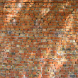 Brown brick wall background — Stock Photo
