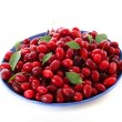 Stock Photo: Cranberries