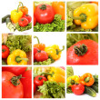 Collage made of different vegetables — Stock Photo
