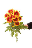 Bunch of flowers in the hand — Stock Photo