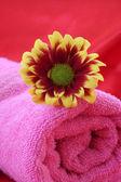 Fleur et serviette rose — Photo