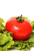 Fresh Red weet Tomatoes — Stock Photo