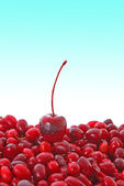 Cherry and cranberries on blue background — Stok fotoğraf