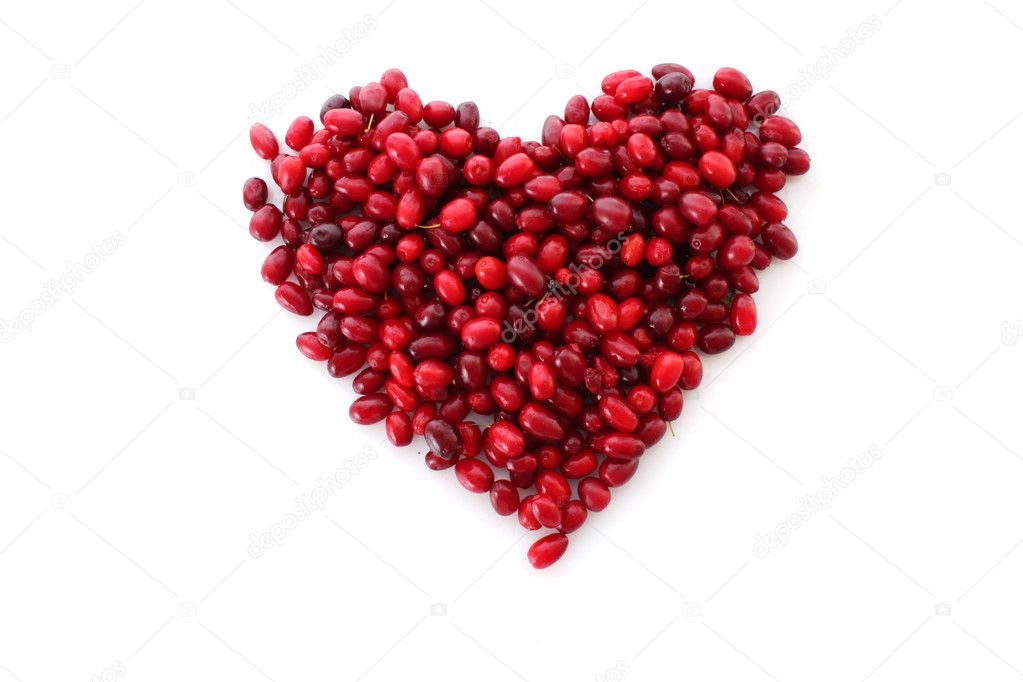 Cranberries — Stock Photo #7289017