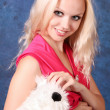 Beautiful blond girl in pink dress with small dog on blue — Stock Photo