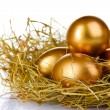 Golden eggs in nest - Stock Photo