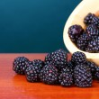 图库照片: Beautiful blackberries