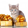 Funny kitten and golden gifts isolated on white — Stock Photo