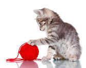 Funny gray kitten and ball of thread isolated on white — Stock Photo