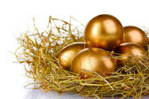 Ovos no ninho de ouro — Fotografia Stock