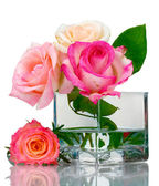 Beautiful roses in transparent vase isolated on white — Stock Photo