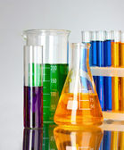Test tubes in the laboratory — Stock Photo