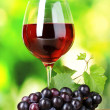Ripe grapes and glass of wine — Stock Photo #7622916