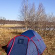 Blue tent and bare trees - Photo