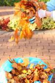Maple leaves in hand , golden autumn — Stock Photo