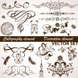Calligraphic and floral element - Image vectorielle
