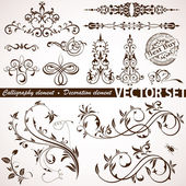 Calligraphic and floral element — Stock Vector
