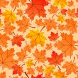 Stock Vector: Autumn leaves seamless pattern, vector