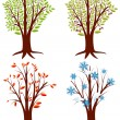 Tree Seasons - Stock Vector