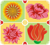 Floral background, icon set, illustration — Stock Vector