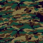 Постер, плакат: Camouflage