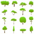 Stock Vector: Tree graphics