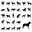 Big set of dogs — Stock Vector