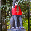 Fox statue in Japanese shrine — Stock fotografie #7661188