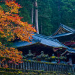 Japanese Autumn — Stock Photo #7663418