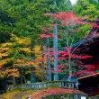 Japanese Autumn — Stock Photo