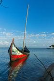 Barcos moliceiros — Foto de Stock