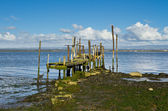 Fishing dock — Stock Photo